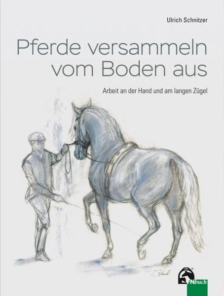 Ulrich Schnitzer; Pferde versammeln vom Boden aus