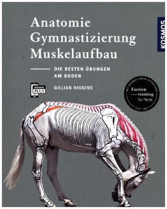 Higgins, Gilian; Anatomie, Gymnastizierung und Muskelaufbau